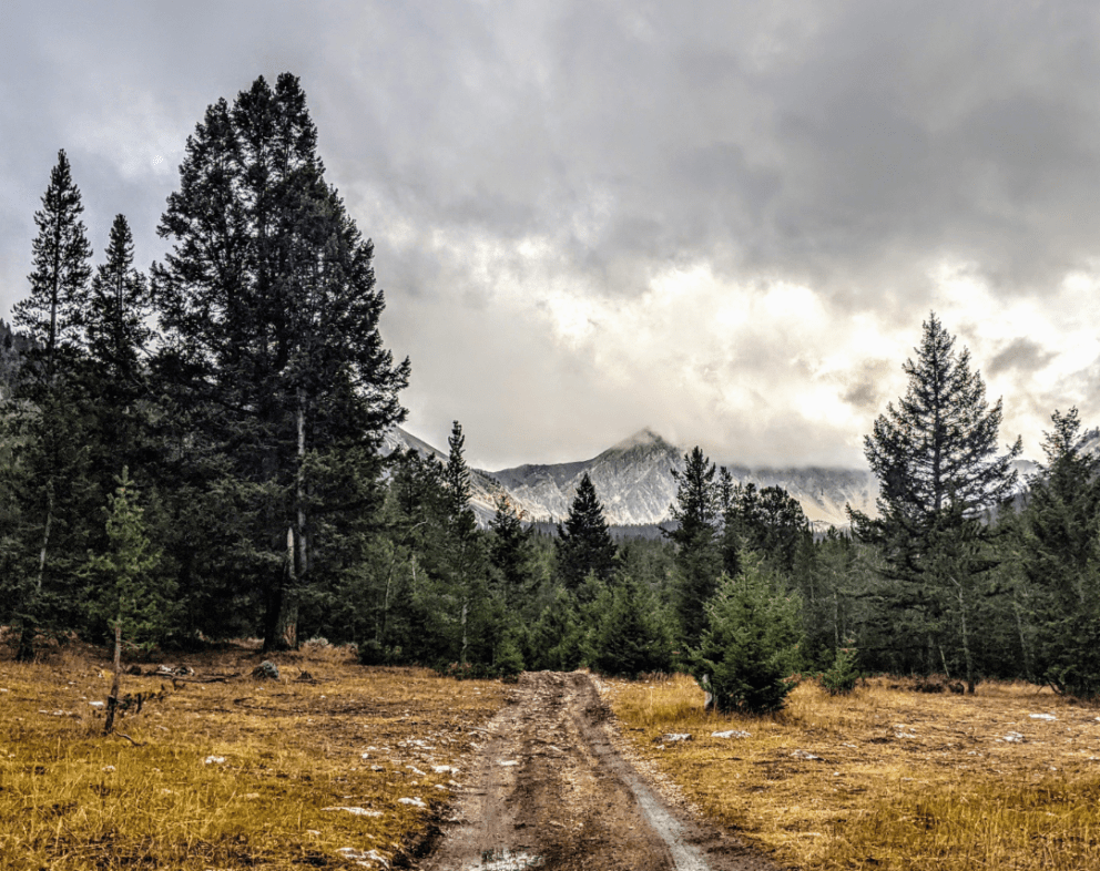 Gilmore Idaho mountainside